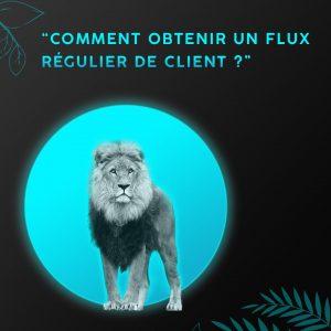 facebook_public_cible_lion-min