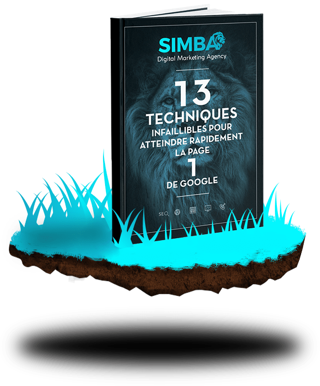 simba_ebook_atteindre_première_page_google_2